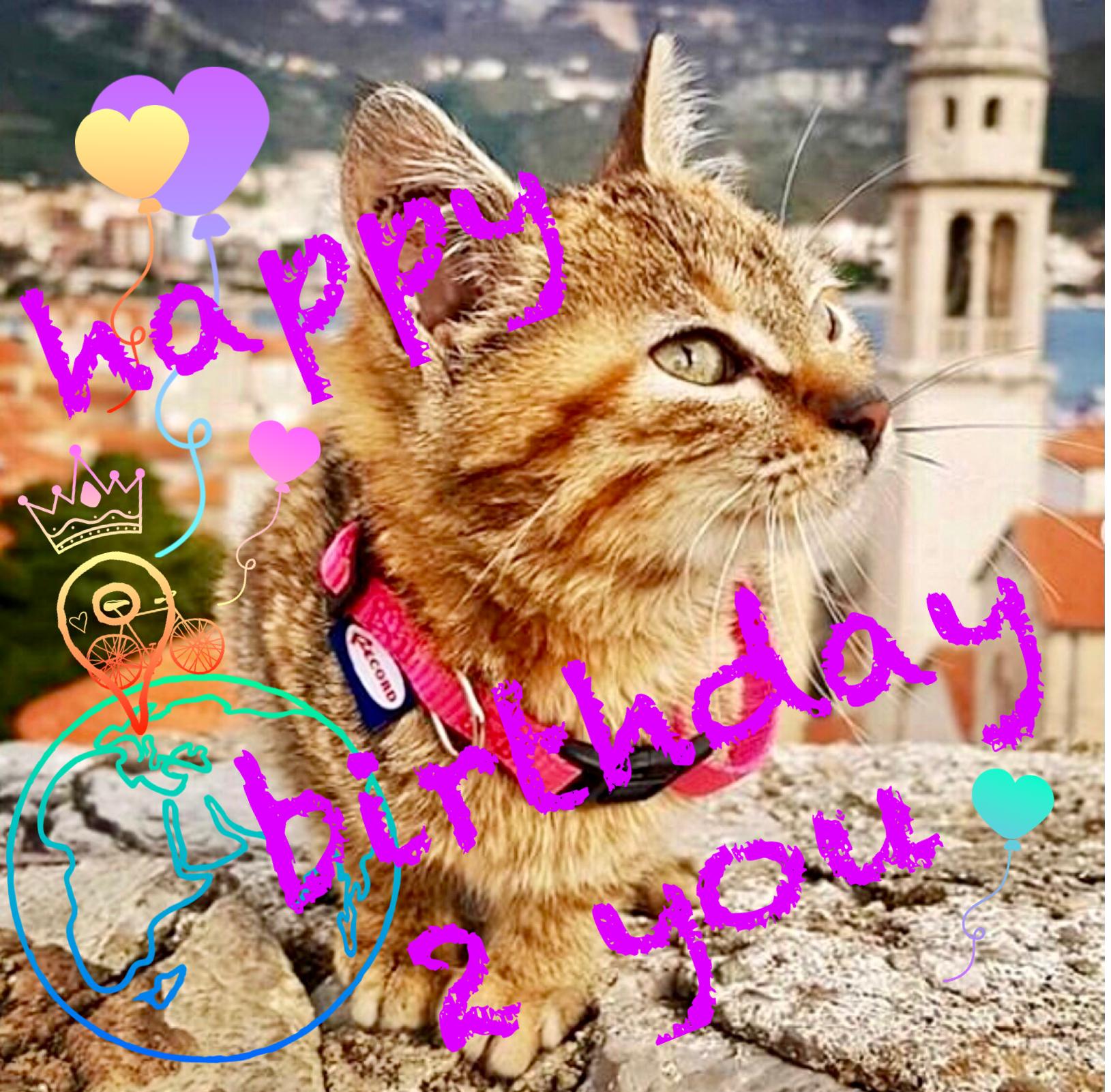 It's Nala's birthday today.