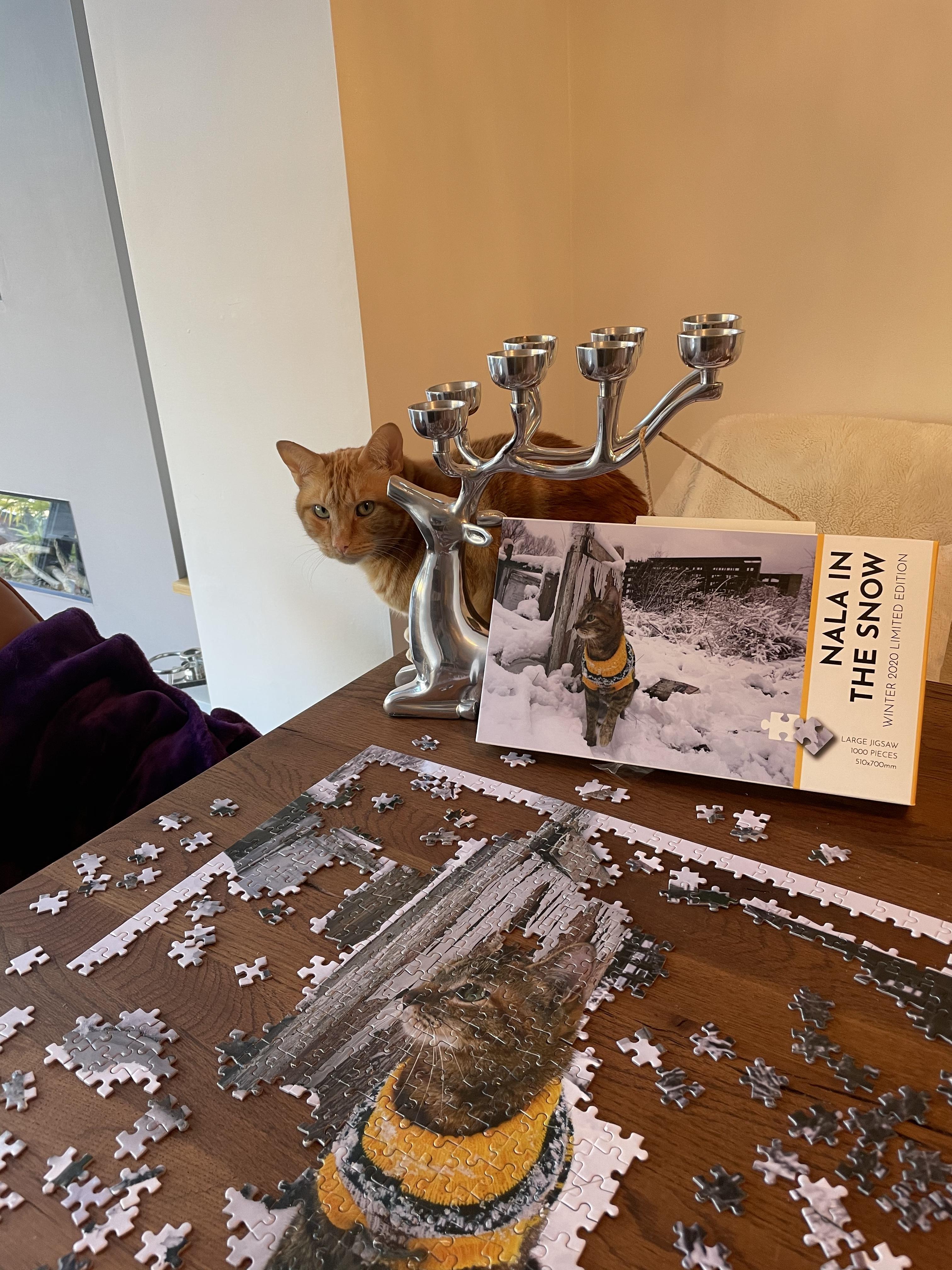 Nalas jigsaw 🧩 with Ben